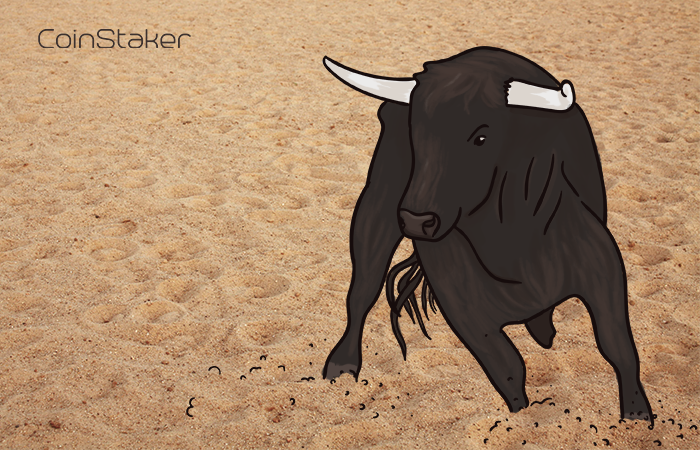 Bitcoin Trader Takes On The Market's Volatilty In Recent Turn Of Events |
