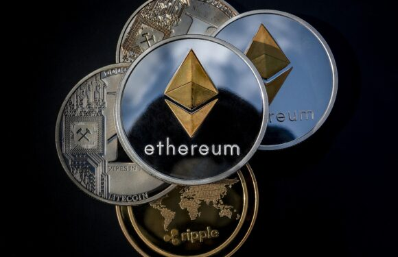 ADA, SOL, and DOT Contend for Dominance; ETH Challenges BTC