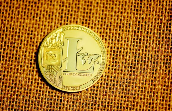 Will Litecoin (LTC) Rally Back to ATH? – Price Prediction