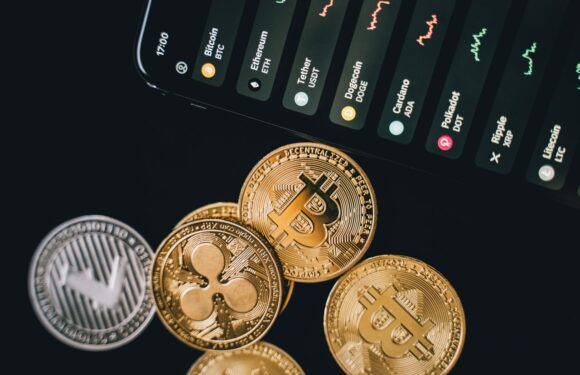 Best Business Crypto Accounts