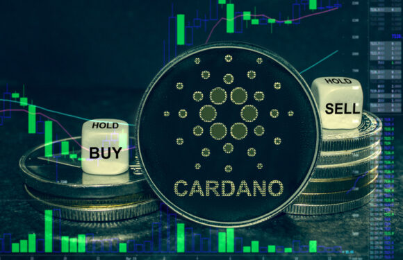 New Stablecoin to be introduced in Decentralized Finance Sector by Cardano
